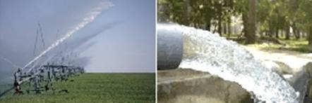 agriculture intensive rejets industriels La problématique de leau