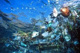 Pollution pacifique...