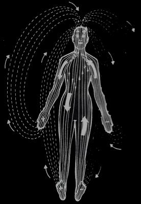 champs magnetiques humains Magnétisme & Electromagnétisme