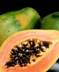 papaye-immunite-antioxydant