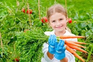 legumes-project-enfant-potager