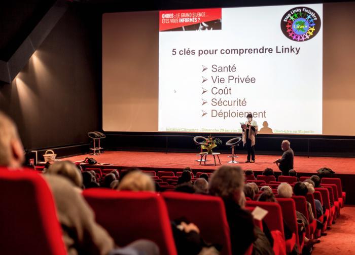 initiative-citoyenne-sacrifies-des-ondes-linky-compteurs-communicants-panier-du-bien-etre-majestic-finistere-25