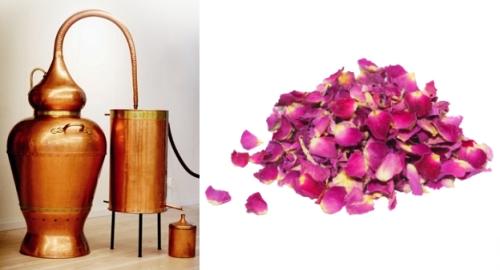 aromatherapie huiles essentielles1 Aromathérapie : huiles essentielles, hydrolats