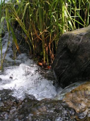 eau de source La problématique de leau