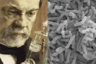 louis pasteur germes maladies La problématique de leau