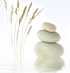 panier-du-bien-etre-simplicite-lumiere-positivite