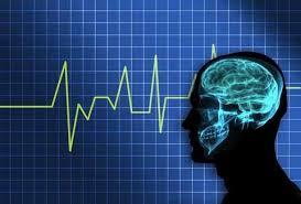activite cerebrale Problématique des ondes électromagnétiques