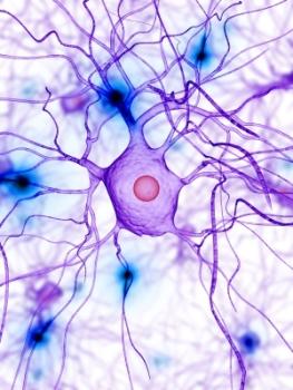 interactions biochimiques dans notre organisme2 Problématique des ondes électromagnétiques