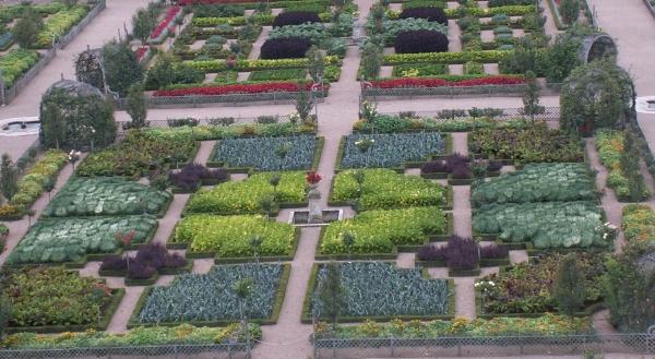 Herboristerie : jardins médiévaux de plantes médicinales