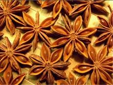 plante medicinale badiane Badiane