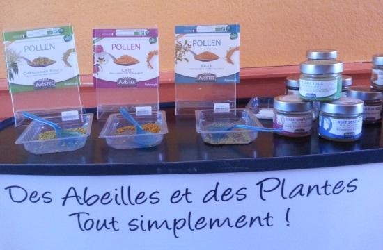 degustation-produits-de-la-ruche-aristee-gamme-pollenergie-et-miels-panier-bien-etre-saint-pol-de-leon-nord-finistere-bretagne