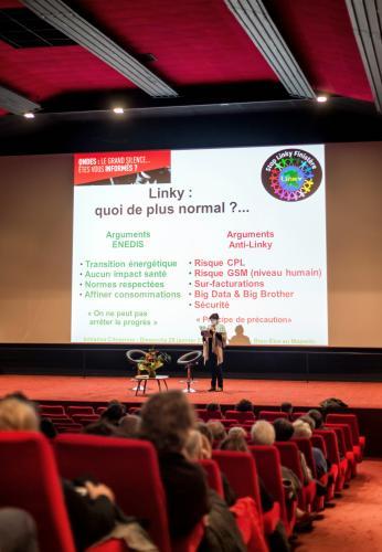initiative-citoyenne-sacrifies-des-ondes-linky-compteurs-communicants-panier-du-bien-etre-majestic-finistere-26
